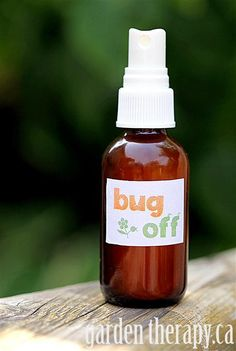 All Natural Bug Spray Recipe with witch hazel and essential oils. Super easy recipe that works...and it doesn't stink!