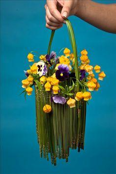 flower adventur