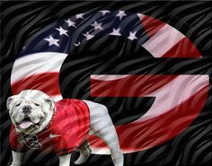 AWESOME DAWGS!