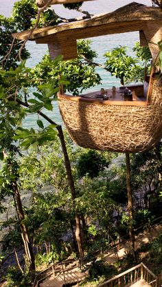 Tree top dining pod, where waiters zipline in.