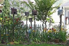 Birdhouses and picket fences