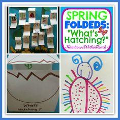 idea, preschool theme, ece spring, preschool spring, hatch, rainbowswithinreach, spring preschool, april classroom, preschools