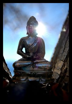 #Victoria Craven: Craven Photography: My Traveling Buddha in New Zealand.  -We cover the world over 220 countries, 26 languages and 120 currencies hotel and flight deals.guarantee the best price multicityworldtravel.com