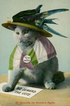 Cats used in anti-suffragette posters.