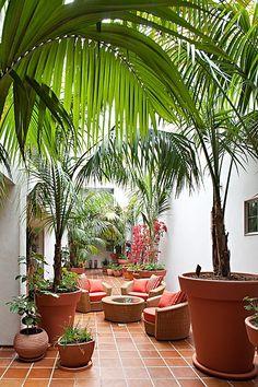 Tropical-chic Design... Paradise!