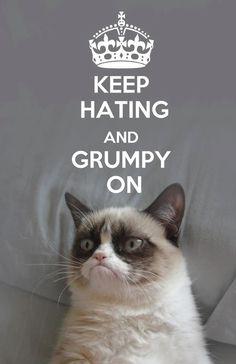 Grumpy on, love this cat!