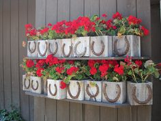 flower pot, horsesho, small box, flowers, diy, western decor, flower boxes, planter boxes, window boxes