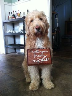 What a cute dog - love this proposal!