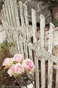 love the fence