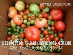 Thinking of starting a school gardening club? Check out these ideas on how to get started.