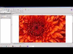 Free Web Design Software - As good as DreamWeaver now on http://DevelopMobileWebsite.com - http://developmobilewebsite.com/free-web-page-design-software/free-web-design-software-as-good-as-dreamweaver/