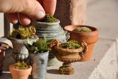 DIY... Making fairy pots for the fairy garden..