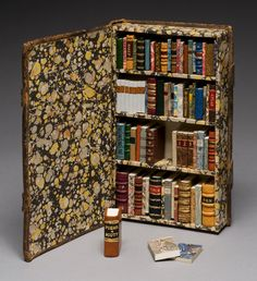 Miniature books shelved inside a regular sized book by Todd Pattison.