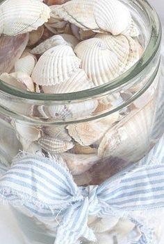 put seashells in a glass jar