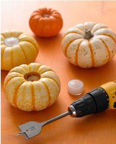 Mini pumpkins as tea light candle holders.
