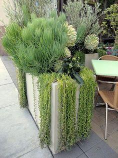 Small Garden Design Tips and Ideas