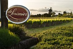deLorimier Winery in beautiful Alexander Valley, Sonoma County, CA