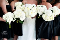 white peonies, white hydrangeas, white bridal bouquet, white wedding flowers