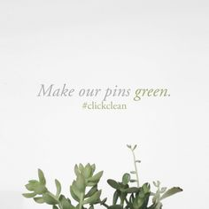 Pinterest: love you but please make our pins green and make the switch to renewable energy! #clickclean http://www.greenpeace.org/usa/clickclean/