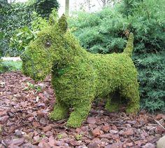Scottie dog! love him!