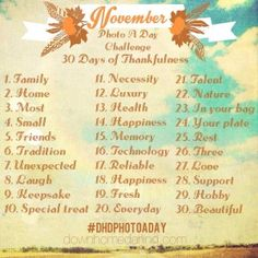 """""""November Photo A Day Challenge"""" - This is one of the best lists I found. Hoping to give it a try."""