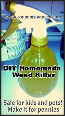 DIY Homemade Weed Killer 1 Gallon of White Vinegar 1 tablespoon of Dish soap 1 cup table salt