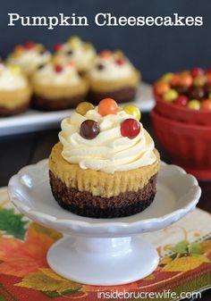 Cheesecake Layered, Chocolates Cheesecake, Chocolates Pumpkins ...