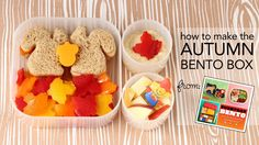 Learn to make an Autumn themed bento box - Add a touch of the fall season to your child's lunch with a cute autumn-themed bento box. Learn to make squirrel sandwiches and bell pepper leaves and my  technique to keep apples from turning brown! From the book Everyday Bento (http://everydaybento.com) by Wendy Thorpe Copley