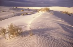 White Sands, New Mexico, lived not to far from here for a year, beautiful country