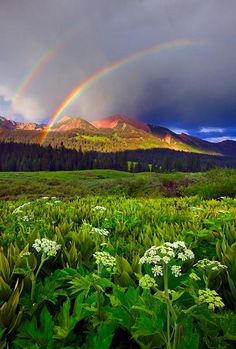 ✯ A double rainbow in the Colorado mountains