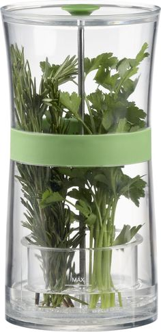 Herb Keeper in Food Containers, Storage | Crate and Barrel