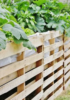 Pallet Vegetables Garden & Safety Fence (You can use pallets in a variety of ways that can bring comfort in your life in an inexpensive way. Creating a pallet garden is quite a new and unique idea that can help in building flower & vegetables beds using useless wooden pallets. This unique idea will formulate you independent and also provide opportunity for earning by sale of your pallet garden products.  (Go to website for instructions and pictures)