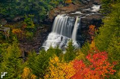 Blackwater Falls - Blackwater Falls State Park - West Virginia