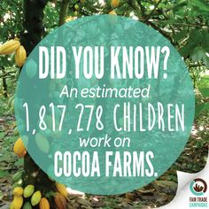 More #FairTrade #Chocolate means less child labor. Join our friends @ftcampaigns in their fight to educate about the #Cocoa industry: http://bit.ly/1zXIhKJ #FairChocolate #DidYouKnow