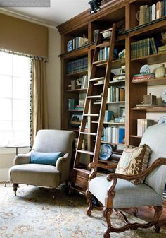 I'd love to have a library with a ladder!