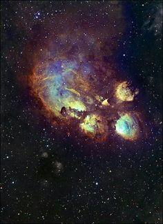 The Cat's Paw Nebula