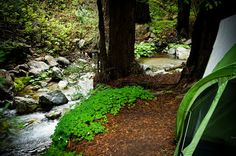 Limekiln State Park, Big Sur, California! West Coast Campground Review - Sweet Summer Spots to Relax & Recharge! | www.MommyHiker.com #OutdoorFamilies