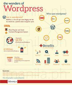 #Wordpress, un po' di dati  #blogging #infographic
