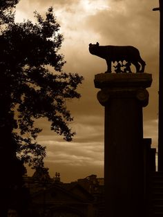 Romulus and Remus - Rome.