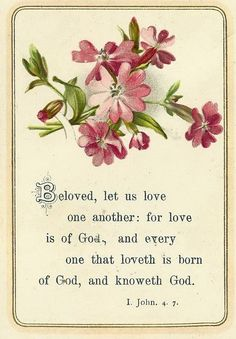 Beloved, let us love one another, for love is from God, and whoever loves has been born of God and knows God.   Anyone who does not love does not know God, because God is love.  In this the love of God was made manifest among us, that God sent his only Son into the world, so that we might live through him.  ~ 1 John 4:7-9