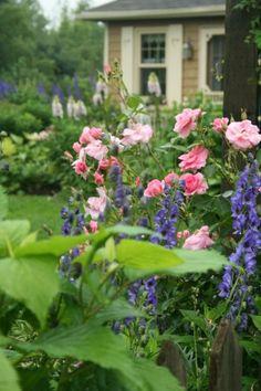 Pretty garden, love the colors!