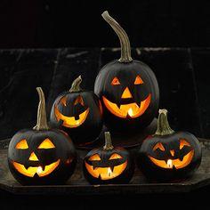 Black pumpkins make a striking impression! Find more looks here: http://www.bhg.com/halloween/outdoor-decorations/outdoor-halloween-decorating-with-pumpkins/?socsrc=bhgpin091814blackpumpkindisplay&page=9