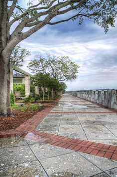 Henry C. Chambers Waterfront park in Beaufort, SC... This was home for 3 years, and I have to admit, I'm going to miss this place