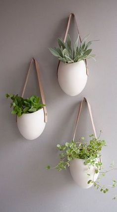 White ceramic hanging wall plants!! *Swoon*