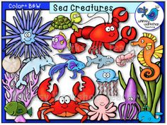 This sealife set has been recently updated to include several more graphics! See the thumbnail preview to see all the new additions. All graphics are high resolution with vibrant colors, and the B+W versions are included as always! $ Whimsy Workshop Teaching