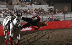Performance: Trick Riding by Lise , via Behance. I have always been in awe of trick riders, I really wish I could do something like this!