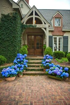 What a statement a few pots of flowers makes .. doesn't hurt that the house is beautiful ... loving the 'ivy', the door, the roofline.