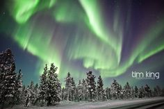 northern lights near the ice hotel in sweden.  ONE DAY!