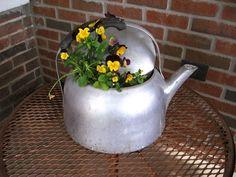Tea kettle planter.