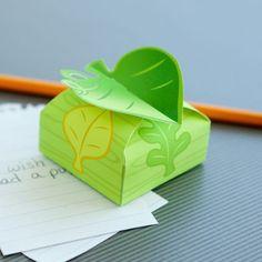 The Odd Life of Timothy Green Wish Box